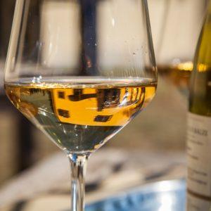 Rocca di Castagnoli vino