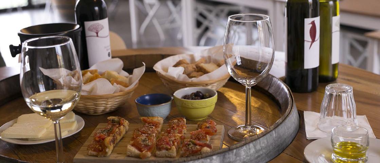 Degustazione di oli e vini e pranzo