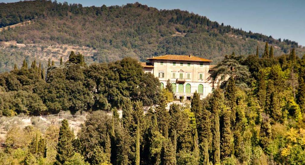 Degustazione 3 vini e visita alla tenuta/villa rinascimentale